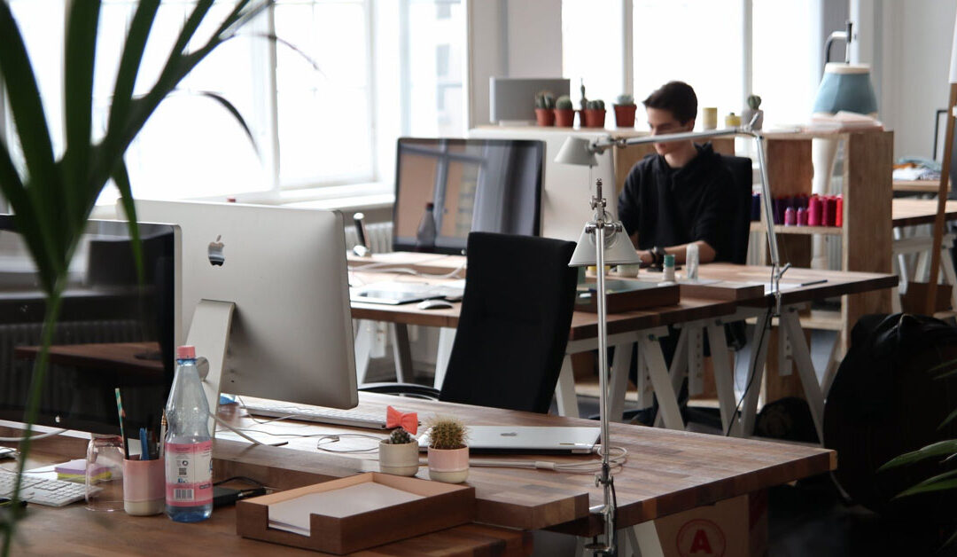 tartup-business-office